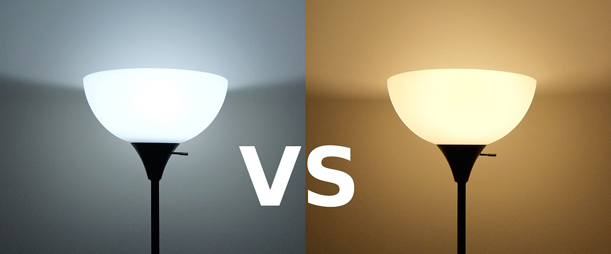 Daylight Light Bulbs Vs Soft White